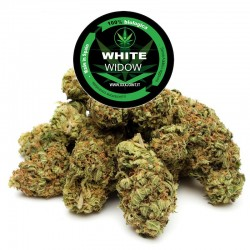 White Widow® CBD 25%