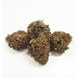 Sfuso Cannabis Canapa light 20%