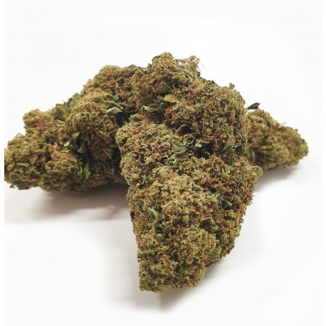 Sfuso Cannabis Canapa light CBD 20/22%