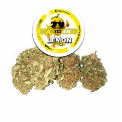 Lemon Haze® CBD 17% V 2.0