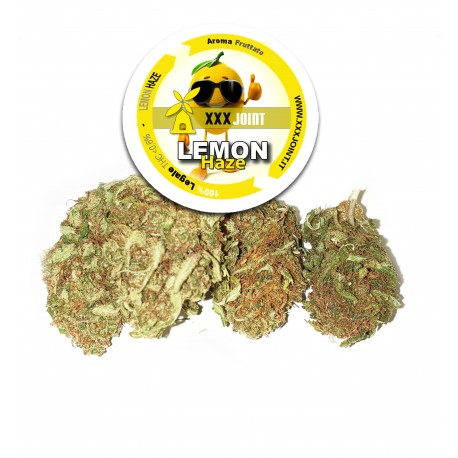 Lemon Haze® CBD 17%