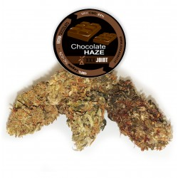 Chocolate haze® CBD 23%